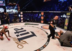 Bellator 158: London - Lima Defeats Daley, Mitrione KOs Thompson, Page Fractures Santos' Skull (photos)